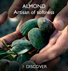 Almond, Artisan of Softness
